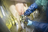 Join hands milking machine on a dairy farm — Foto Stock