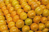 Tangerines in a supermarket — Stockfoto