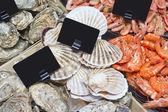 Большое разнообразие морепродуктов в супермаркете — Стоковое фото