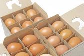 Twelve chicken eggs in packing — Stock fotografie
