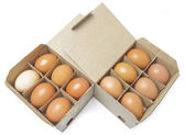 Twelve chicken eggs in packing — Stock Photo