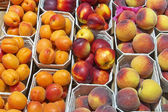 Fresh peaches and apricots — Stok fotoğraf