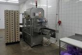 Fleischfabrik — Stockfoto