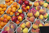 Fresh peaches and apricots — Stockfoto