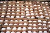 Eggs in packing — Stock Photo