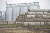 Haystacks and granary — Stock Photo
