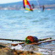 Surfing. Black Sea. Gelendzhik — Stock Photo