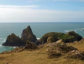Kynance Cove West Cornwall — Stock Photo