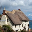 Thatched Cottage Church Cove Cornwall — Stock Photo #22538023