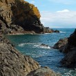 Cadgwith Cove Cornwall — Foto Stock #22653051