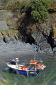 Fishing Boat at Cadgwith Cove — Stock Photo
