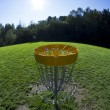 Disc golf basket3 - Foto de Stock