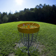 Disc golf basket3 - Stock Photo
