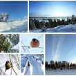 Winter picture Collage — Stock Photo