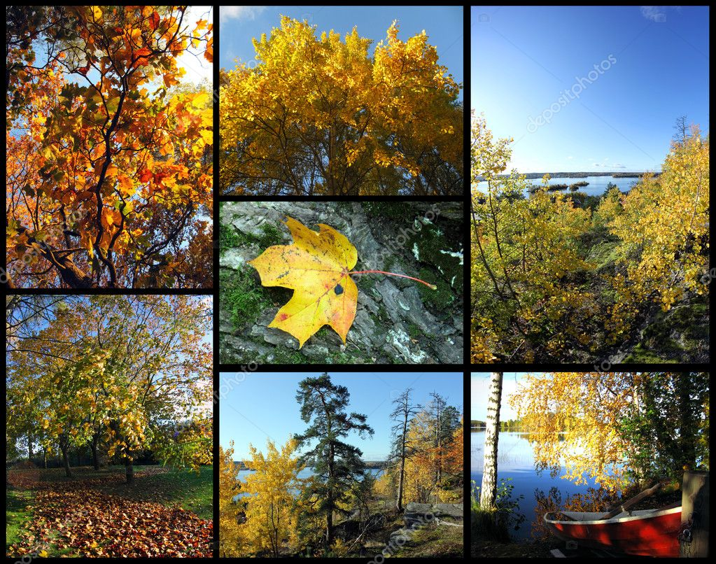 Seven pictures which represent autumnal colours and landscapes. — Stock Photo #12931978