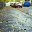 Autumnal street — Stock Photo #13375037