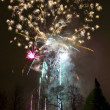 Fireworks launched from ground — Stock Photo #14162863