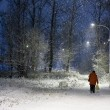 Winter night scene in city — Stock Photo