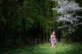 Girl in wonder wood — ストック写真