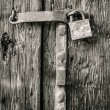 Old padlock on a wooden door — Stock Photo #48842461