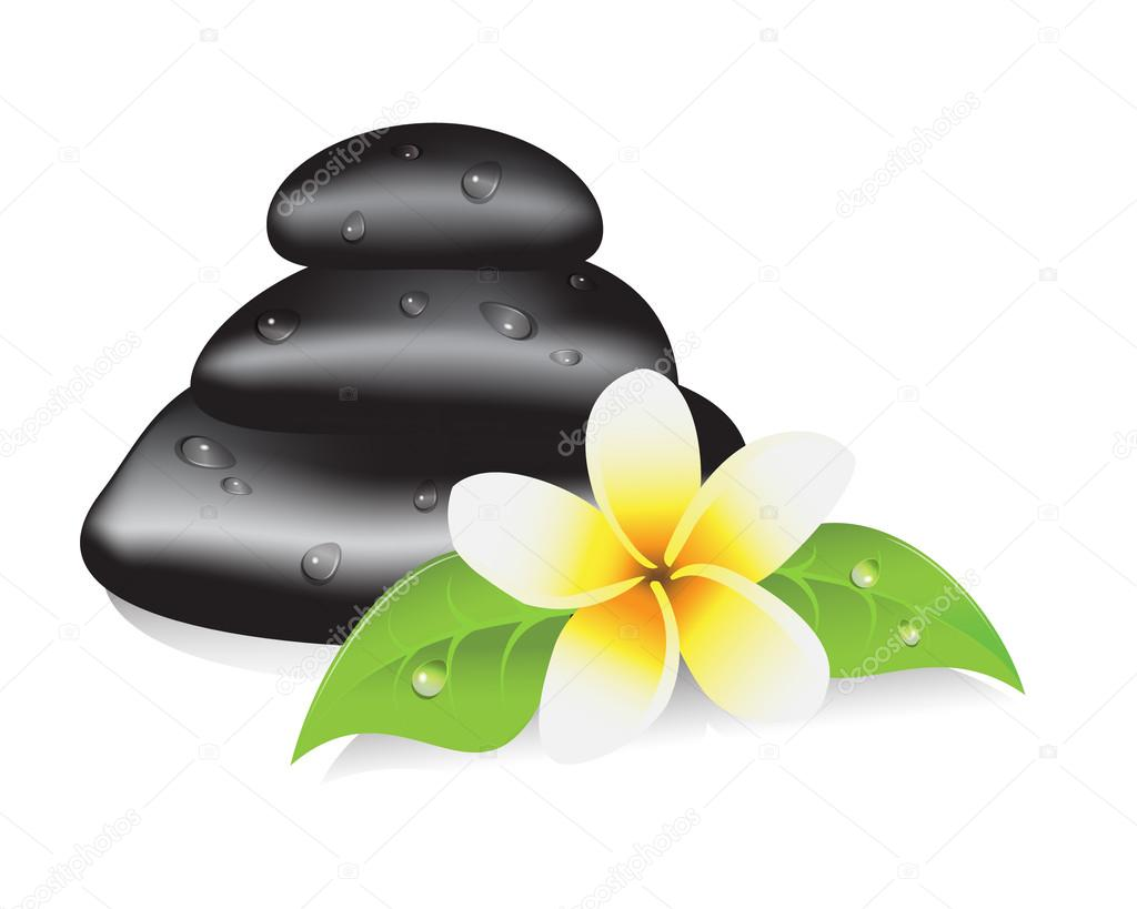 Stones for a spa therapy, leaves and frangipani flower  Stock Vector #12123187