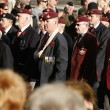 Remembrance Day Parade — Stock Photo