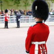 Queen's Soldier at Queen's Birthday Parade — Stock Photo #28112543