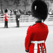 Queen's Soldier at Queen's Birthday Parade — Photo