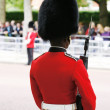 Stock Photo: Queen's Soldier at Queen's Birthday Parade