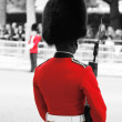 Queen's Soldier at Queen's Birthday Parade — Stock Photo #28113103