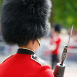 Queen's Soldier at Queen's Birthday Parade — Stock Photo