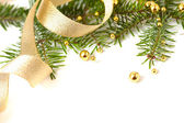 Cristmas seasonal background with spruce and golden beads isolat — Stock Photo