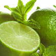 Lime and mint isolated — Stock Photo