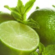 Lime and mint isolated — Stock Photo #34889289