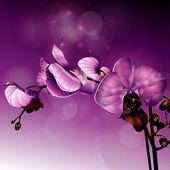 花 — ストックベクタ