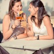 Two Young Women Cheering with Cold Drinks — Stock Photo #14053446