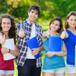 Young group of happy students showing thumbs up sign together ou - Stockfoto