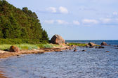 The Baltic Sea coast — Stock Photo