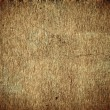 Old, grunge background texture in brown — Stock Photo #12396270
