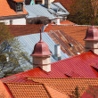 View on Tallinn beautiful red tile roofs — Stock Photo
