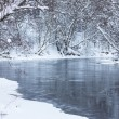 Winter river landscape — Stockfoto #12594599