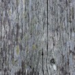 Stock Photo: Plank of old wood