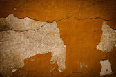 Brown grunge background texture wall — Stock Photo