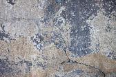 стены старого покинули дом — Стоковое фото