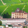 Royalty-Free Stock Photo: Small village castle Barolo among vineyards