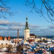 Stock Photo: Tallinn winter city panoramic landscape