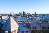 Tallinn winter panoramic view — Stock Photo