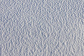 White frost snow texture — Stock Photo