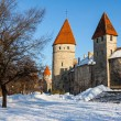 Tallinn city. Estonia.  — Stock Photo