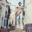 Detail of the typical stone street of Cadaques. Costa Brava. — Stock Photo